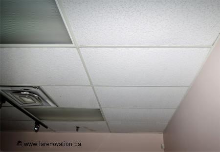 Revtements De Plafond